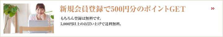 新規会員登録で500円分のポイントGET
